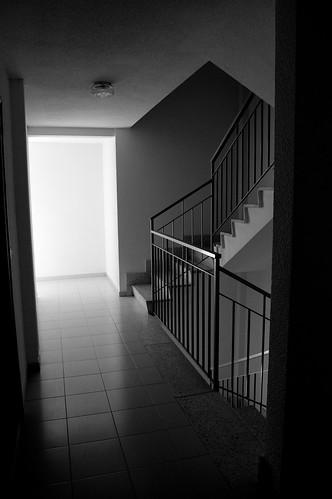 Los contraluces de la escalera