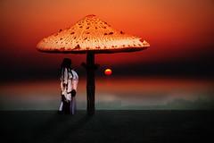 dream of the shaman by Cornelia Kopp