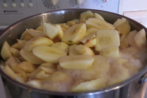 Put all of the apples, water, lemon juice, cinamon stick in the pot and simmer until apples start to fall apart