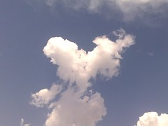 Love is in the air ! Literally !!