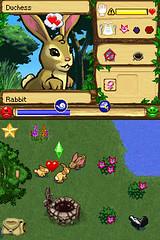 rabbitmating_bmp_jpgcopy