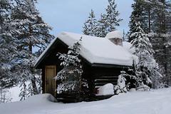 Forest Cabin, Finland