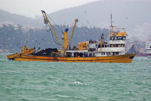 fishers, Beykoz, İstanbul, Pentax K10d