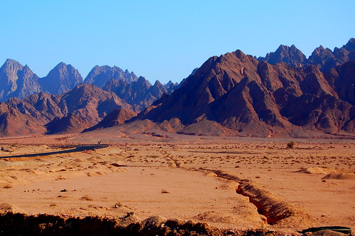 Tribute to the Mountain #2: Sinai