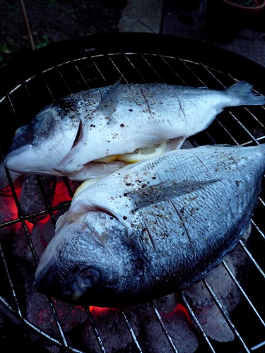 Black Bream on the BBQ