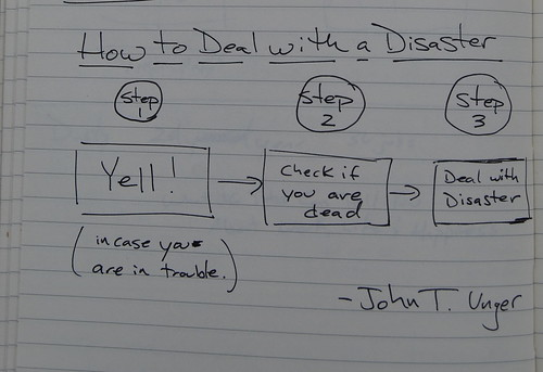 How To Deal with A Disaster by John T. Unger