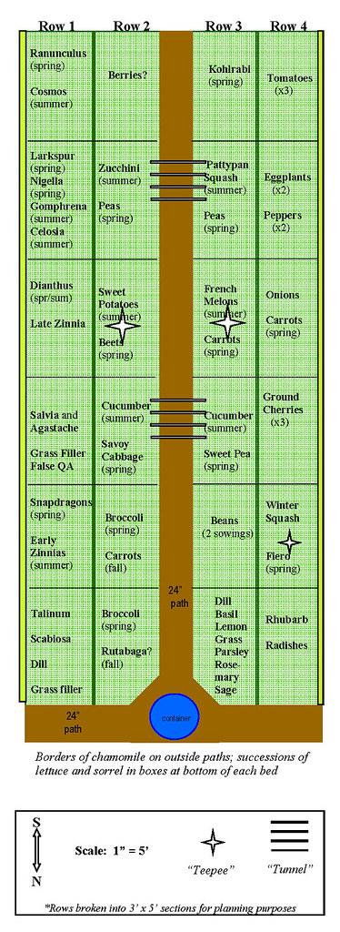Vegetable plot layout