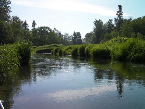 2009-05-30 Alouette River 03