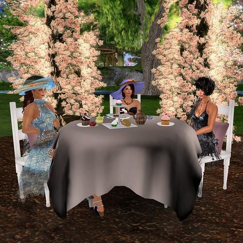 Tea Party 02.06.11 #3