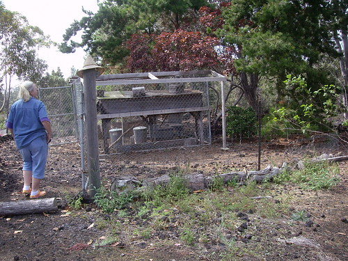 OLDER CHICKEN COOP