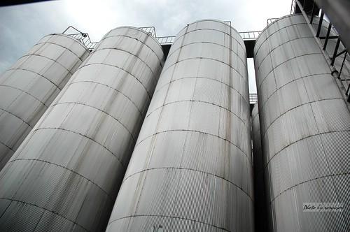 巨大的發酵槽。