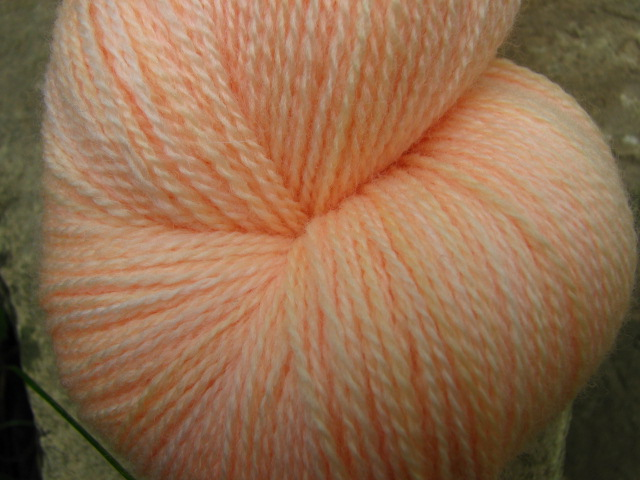 Apricot - Tabby Lace