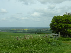 View towards Bishopstone