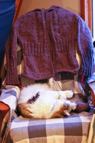 the never ending sweaterrrrrrrrrrrrrrrrrrrr
