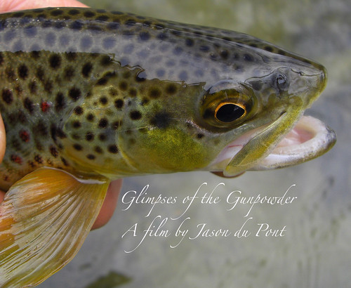 Fly Fishing Film:Glimpses Of The Gunpowder