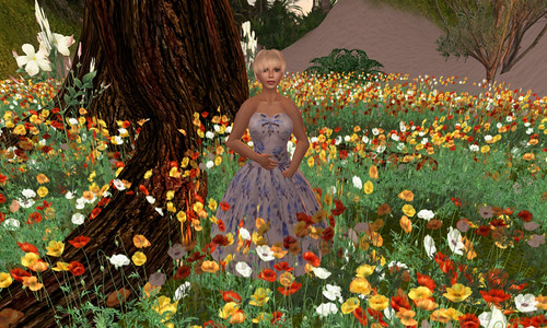 Saffia in Jensine amongst the poppies on Matanzas