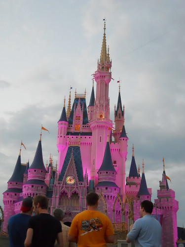 magic kingdom (316)