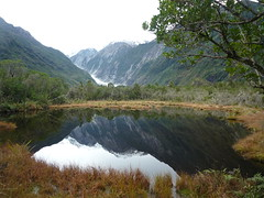 Reflection of Franz Josef Glacier
