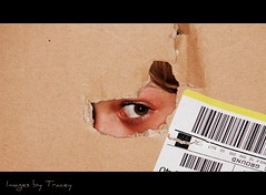 The Joy of an Empty Box by Images By Tracey - On Commenting Hiatus