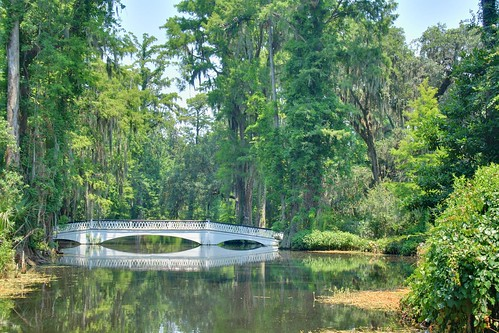 Magnolia Gardens Bridge