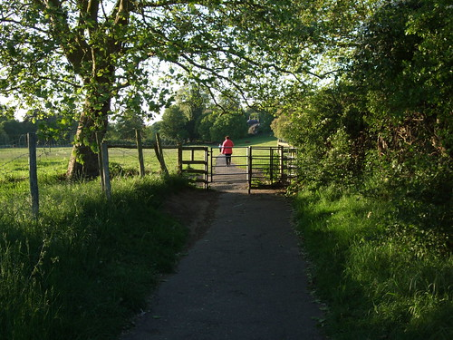 Petersham Meadows