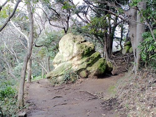巨岩発見!