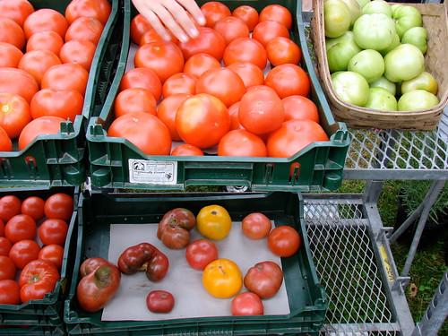 Wishing Stone tomatoes