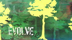 Evolve I (10x18) $60