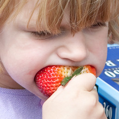 Big strawberry, little mouth