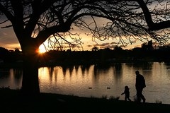 Father and Daughter, Sunset at Centennial Park Sydney Australia