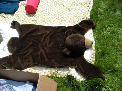 Small bear costume