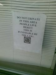 No urination