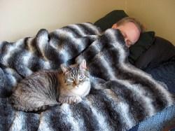 Simon Mike nap