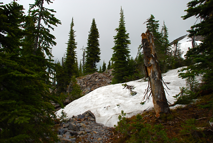 From the Baldy Mountain trail