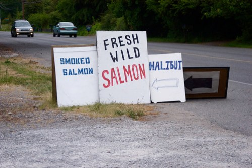 salmon on the side of the road