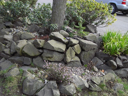Parking strip raised rock bed