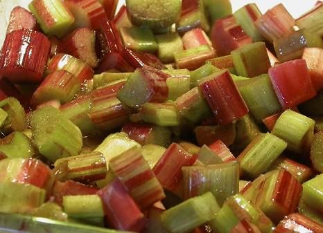 Sweetened Rhubarb