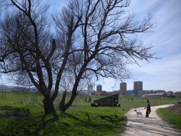 Foto 10 - Regresando a Vitoria por Salburua