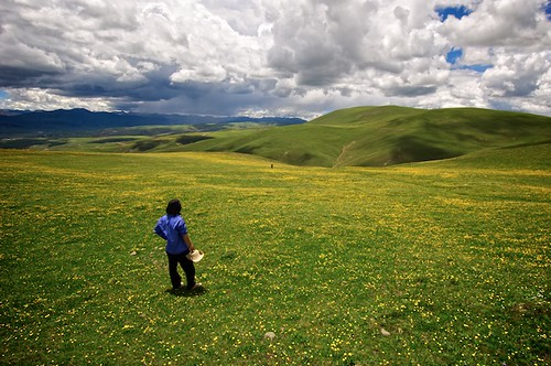 A Tibetan Cowboy waits for a friend on a remote mountain near Litang, Tibet (China).