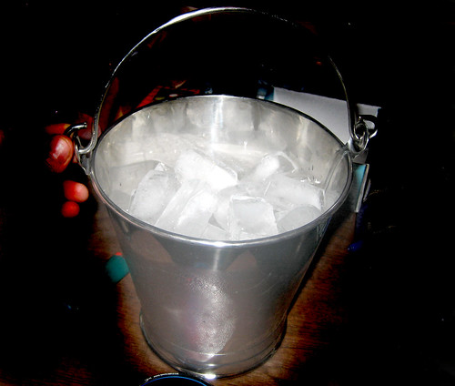 20100501 - yard sale stuff - IMG_0181 - ice bucket ($0.50)