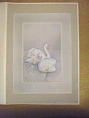 swans mate for life, which is why i chose this - decoupage - for their card. It just fits, as well as being a beautiful card. (Its part of a set, that came with the cranes that i gave to Michiels Mom for mothers day).