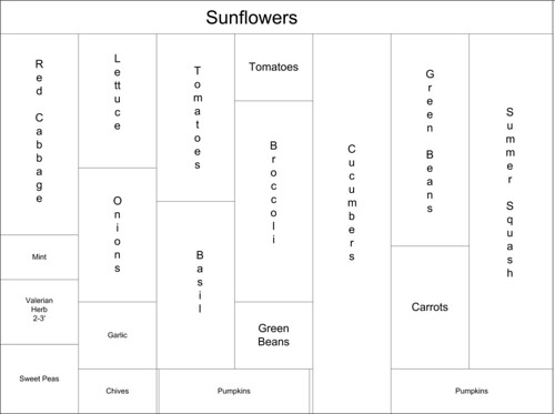 veggie garden map