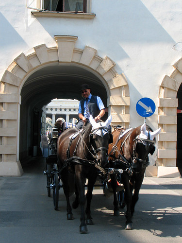 Horse-drawn carriage by you.