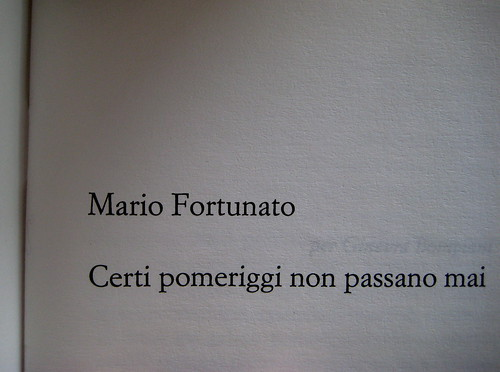 Mario Fortunato, Luoghi naturali, Einaudi 1988, frontespizio (part.) 1