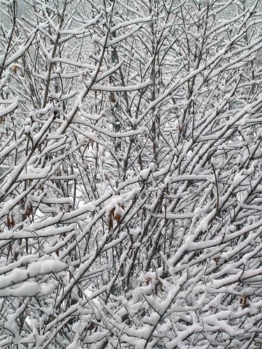 Esta nevando en MAdrid!