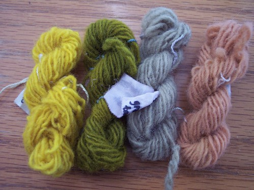 natural dyeing 1st trial