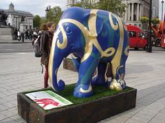 Elephants10-028-copy