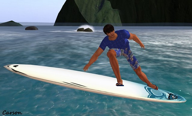 .I.J&T Pose&Animations - Surf Pose (2)