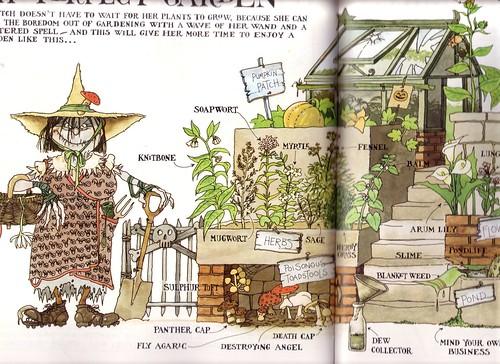 Witchs Handbook by Malcom Bird