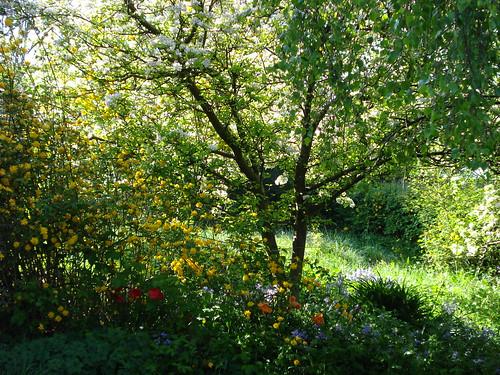 Spring (Wanderlust676 on Flickr : Click image)